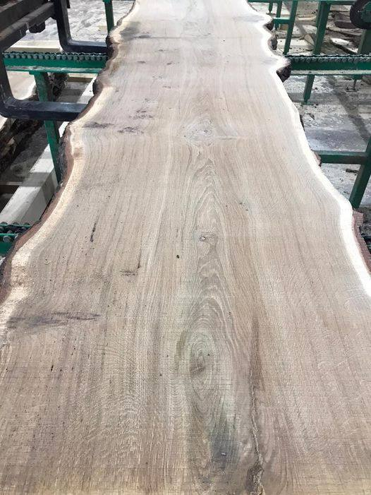 50mm Oak
