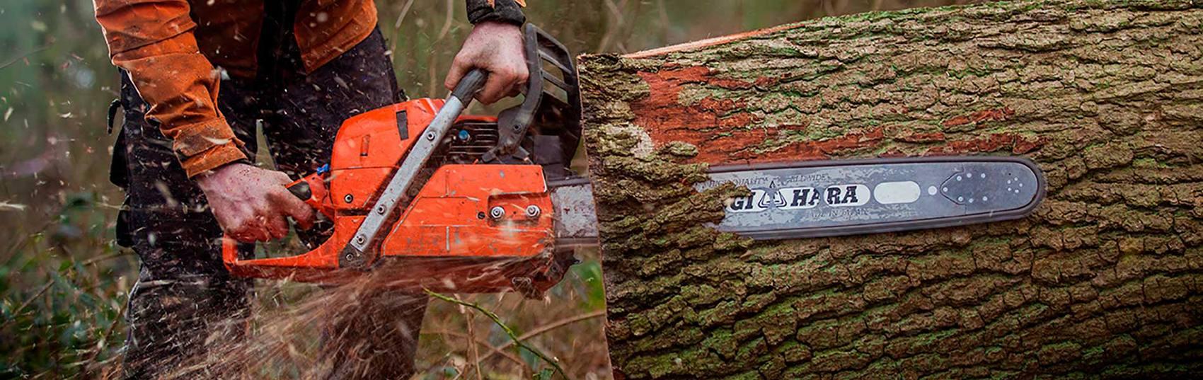 Gallery header chainsaw