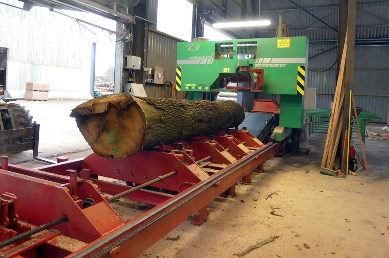Shelmore Timber sawmill